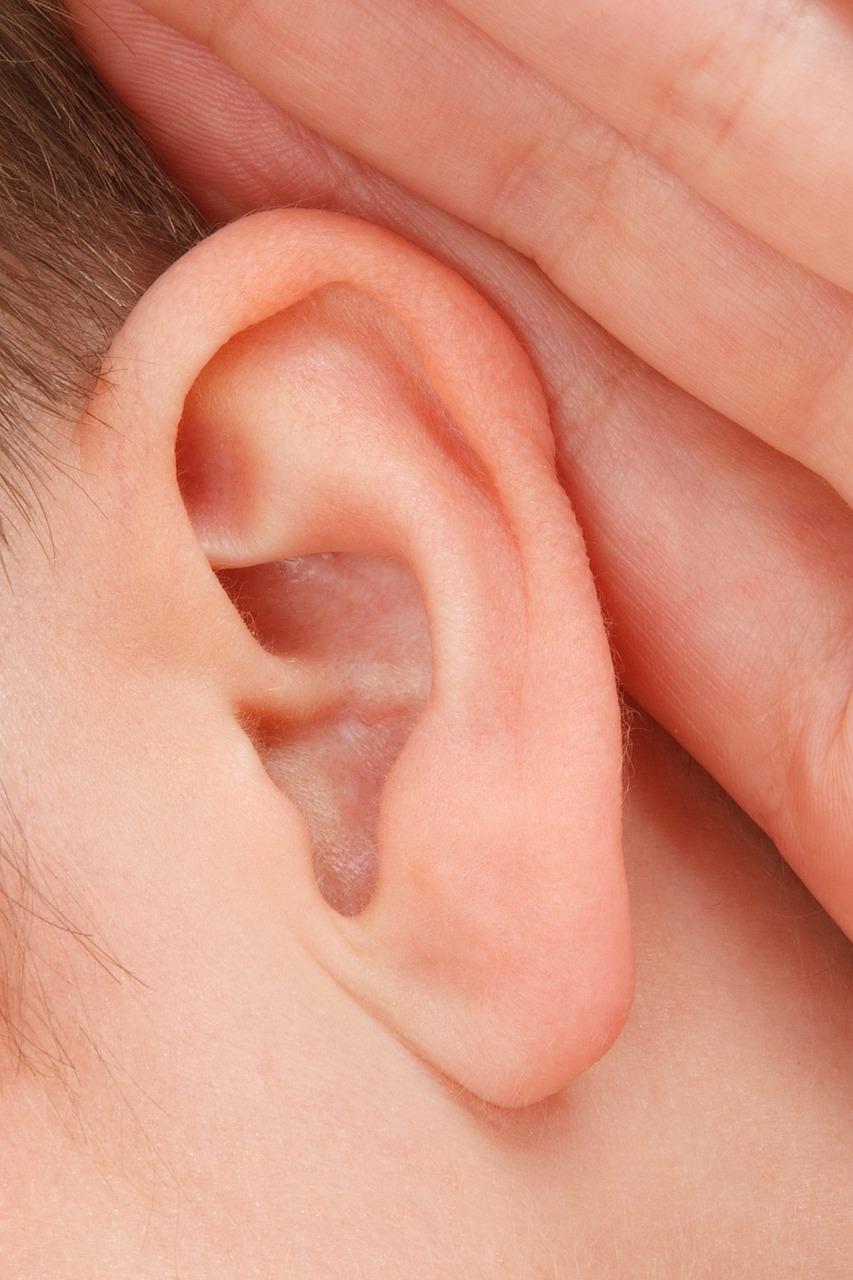 Dermatite all' orecchio : cause e sintomi