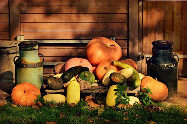 Addobbi halloween: idee per bambini