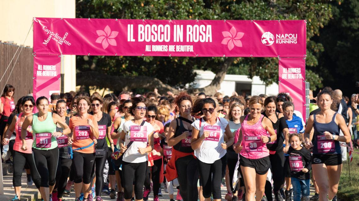 Bosco in Rosa–Corri tra i capolavori
