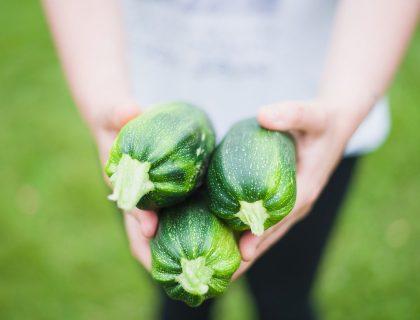 Alimentazione sana proprietà delle zucchine e come cucinarle